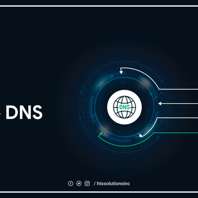 The Uses of Reverse Domain Name System (DNS) Lookup