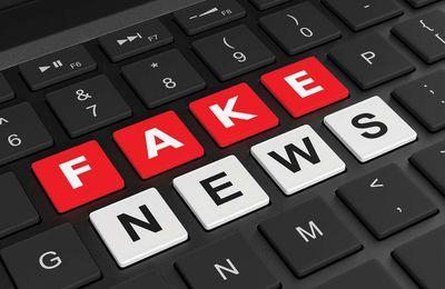 Mise à jour : La minute de Ricardo relayée le 29 mai était une « Fake News »