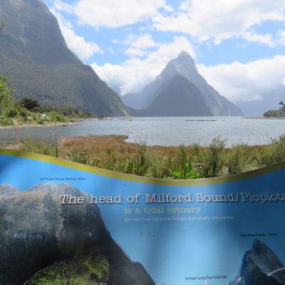 Milford Sound et The chasm