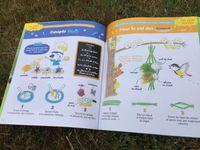 Petite Salamandre 4-7 ans, la revue des curieux de nature