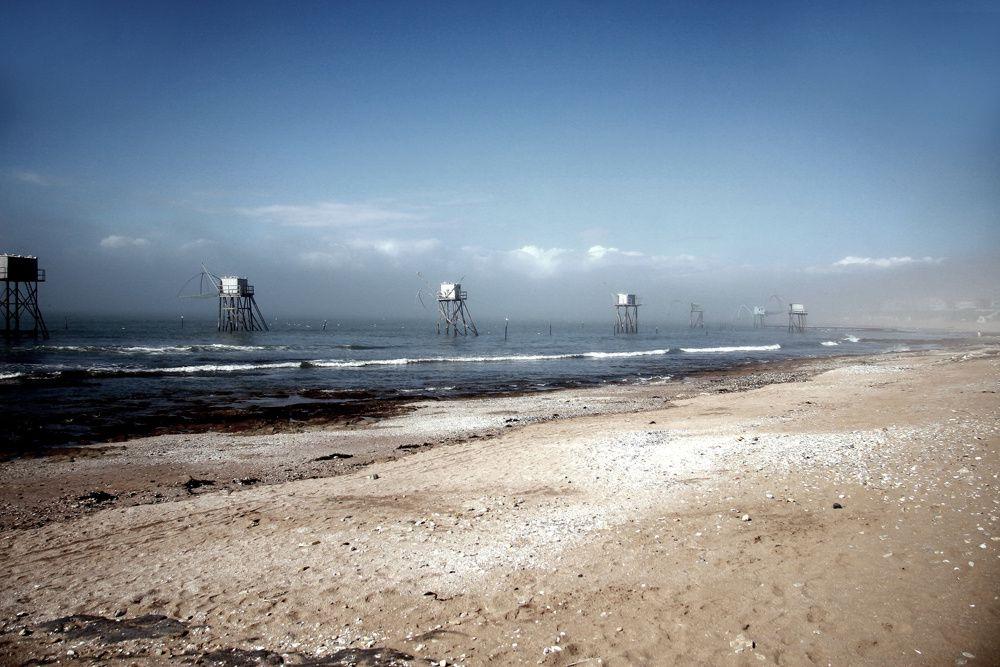 Album - Loire Atlantique