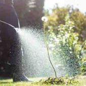 Autriche : interdiction complète du Glyphosate, une initiative historique