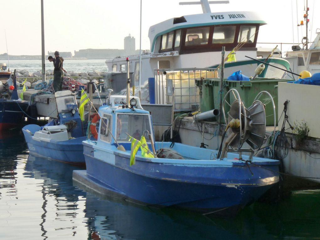 ALICE , a quai dans le port de peche de Port de Bouc 21 avril 2015