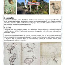 La Réunion CFA  (1949/1974) lettres et cachets 1
