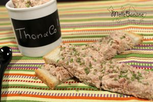 Tartinade de thon presque light