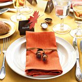 Harvest Napkin Ties