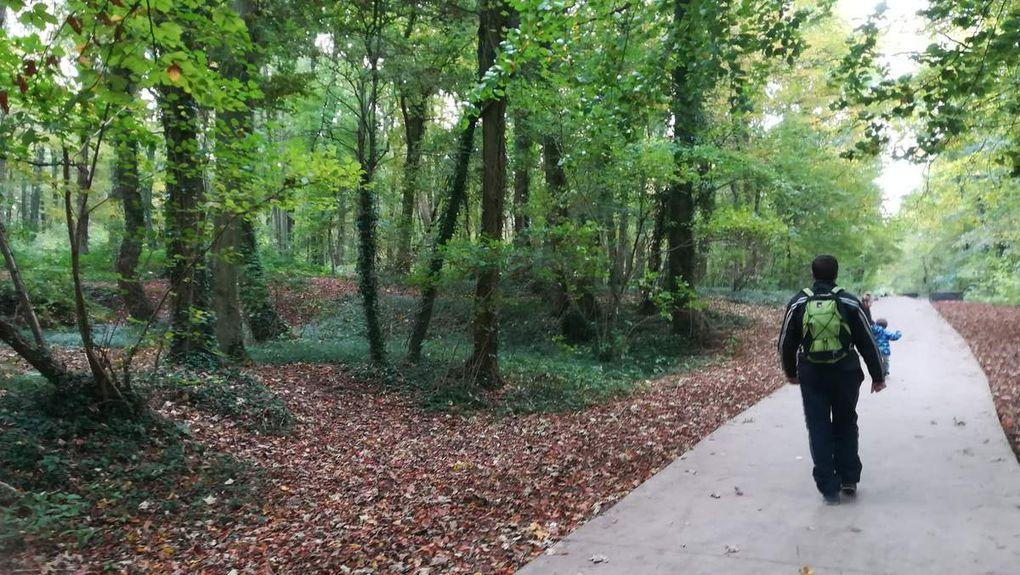 Après midi au parc d'Olhain