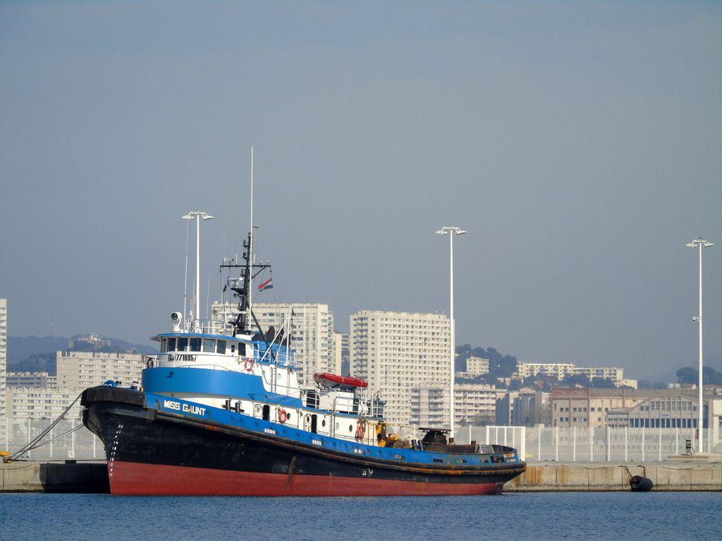 MISS GAUNT , remorqueur , à quai à la Seyne sur Mer le 15 Mars 2017