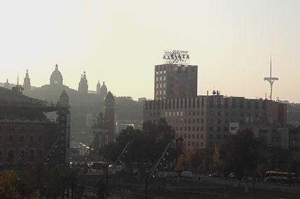 Barcelona : bougainvilliers et perruche, c'est reparti, putain!