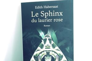 Le Sphinx du laurier rose, d'Edith Habersaat