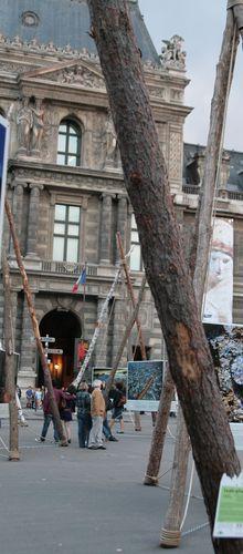 Des forêts et des hommes 2011 : l'expo de Yann-Arthus Bertrand.