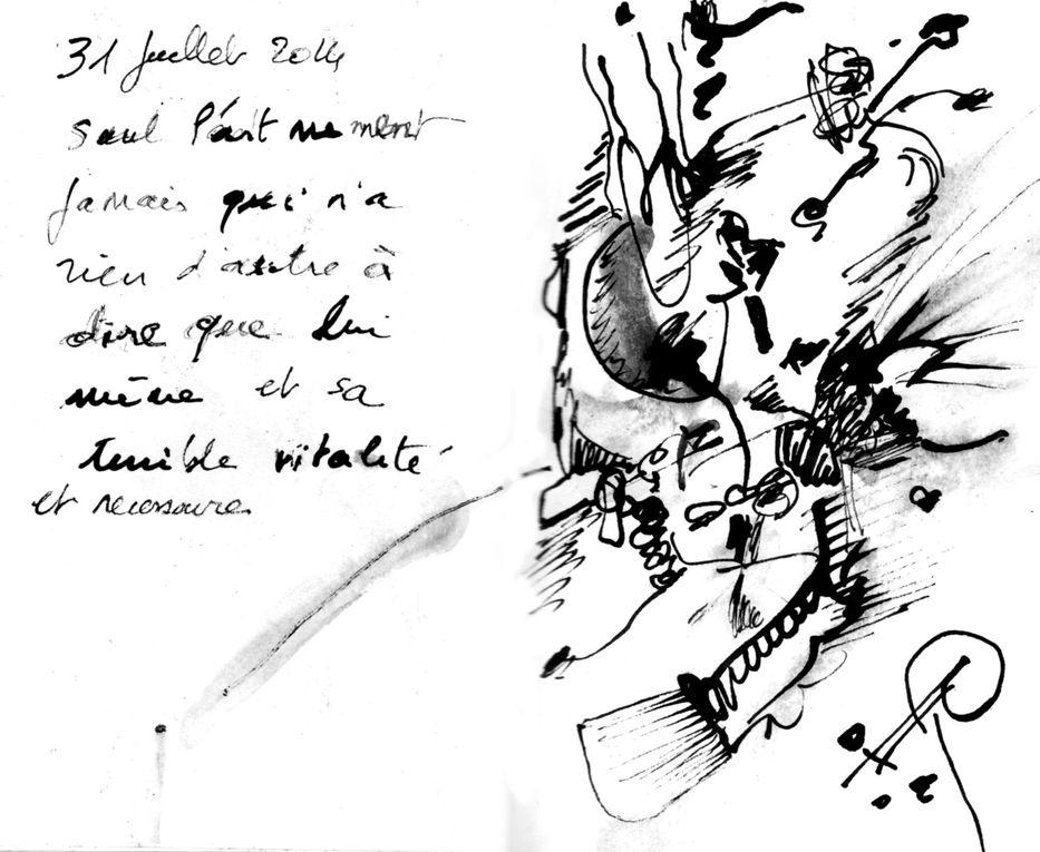 petits carnet de notes poétiques et graphiques 2014