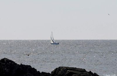 Marche du 25 septembre 2018 - Pointe du Croisic