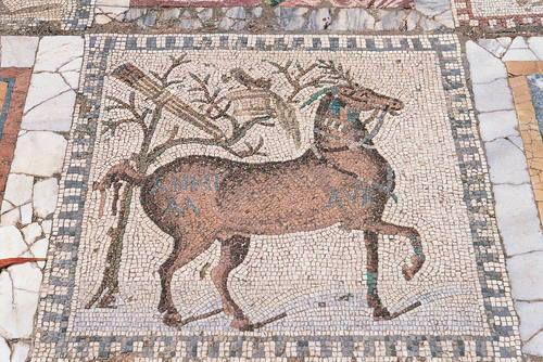 L'acropole de Byrsa