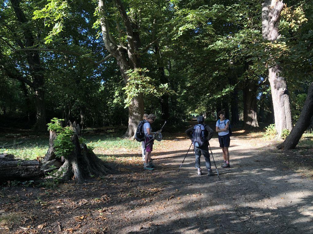 Randonnée en boucle de Boissy-Saint-Léger - 21,5 km.