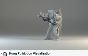 Divers, Musiques, Photos, Art. France, monde, Kung Fu Motion Visualization Vidéo. 4 minutes.