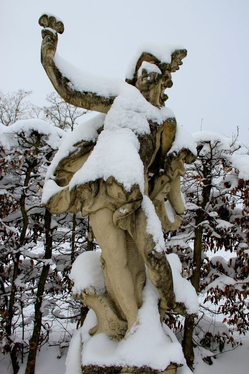 Album - Winter-im-Veitshochheimer-Hofgarten