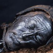 The Tollund man's last meal