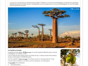 Notre Tour du monde : Madagascar