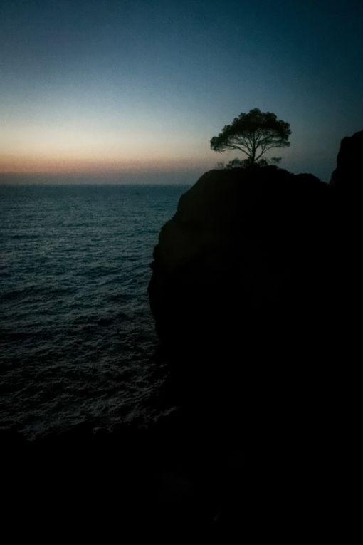 Canyons à Majorque, Avril 2019