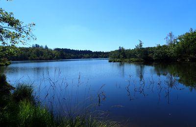 Séjour au plateau des 1000 étangs