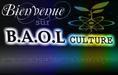 www.BaolMediasCulture.com  bienvenue sur baol-medias-culture  le portail culturelle