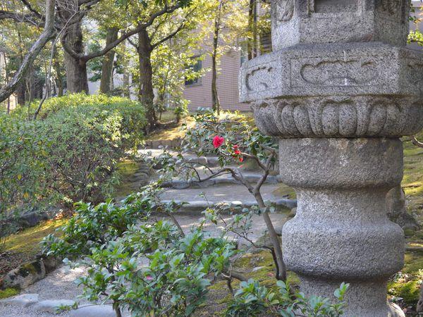 Tokyo Février 2018 #jour 8 - Ryogoku & Akihabara