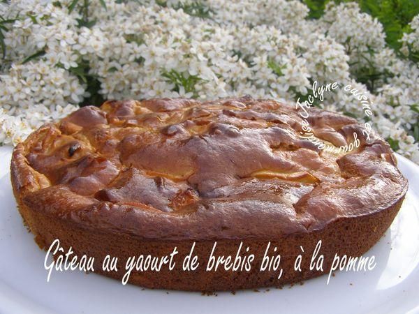 Gâteau au yaourt de brebis, à la pomme *Rapide, simple et naturel*