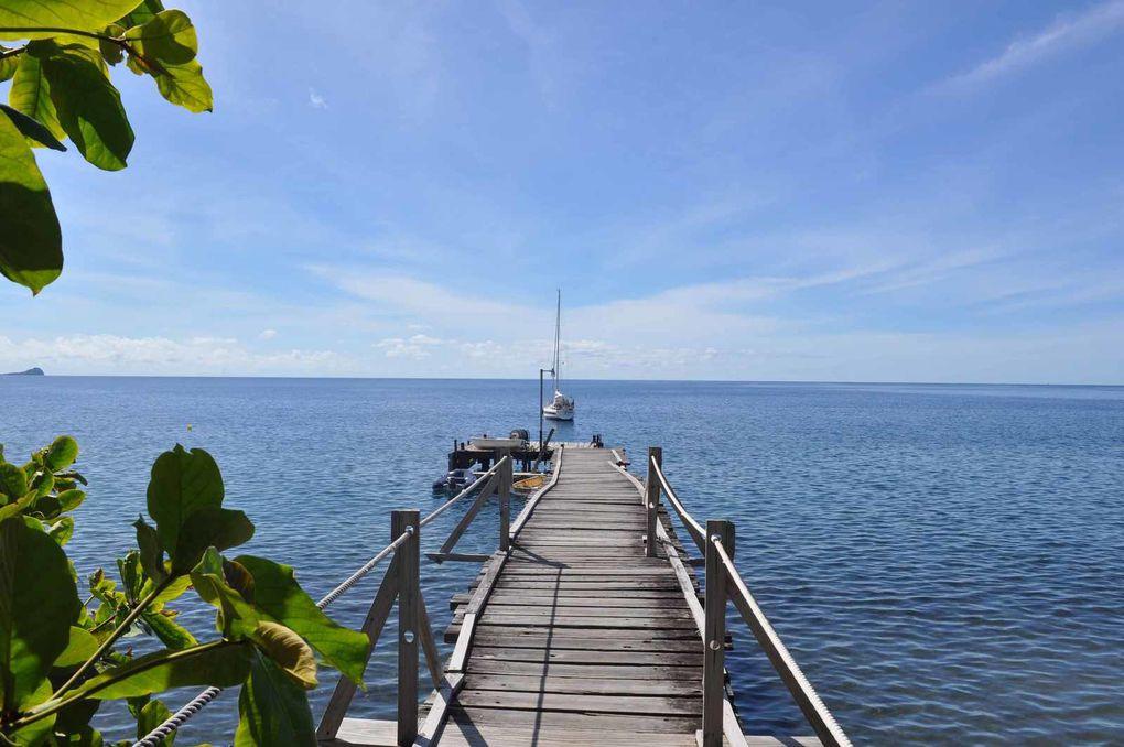 Roseau -Baie