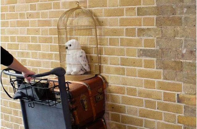 Harry Potter et la voie 9 3/4 à King's Cross