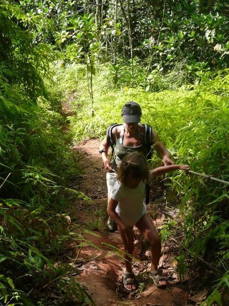 randonnées en Guadeloupe