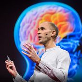 Anil Seth: Your brain hallucinates your conscious reality