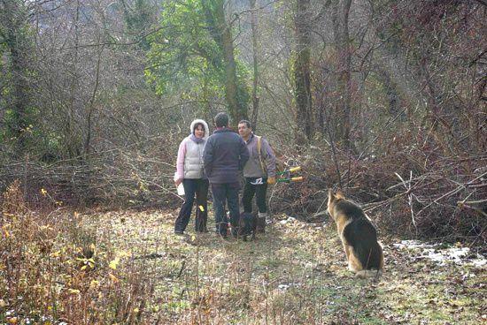 Journee Senier Samedi 29 janvier 2011 Asszociation Vebre Chemins Faisant