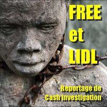 FREE et LIDL | reportage de CASH investigation «Travail, ton univers impitoyable» | L'exploitation extrême au quotidien