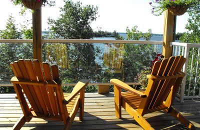B&B Lake of the woods, encore une histoire d'ours