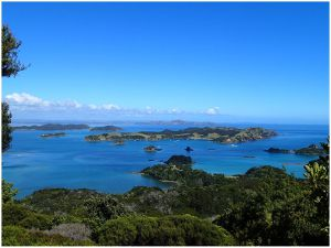 Bay of islands et Tutukaka coast