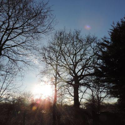 Mon ciel du lundi (26.02.18)