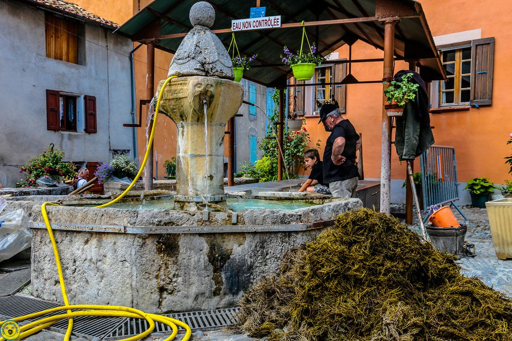 Moriez : Un salon des plantes éclaboussé de bleu