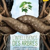 Intelligence des Arbres, L' - Jupiter Films