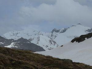 Ski de randonnée : But à la Face nord de la grande Ciamarella - Pointe Tonini - 3327 m
