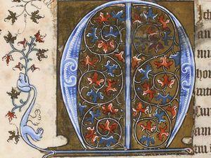 Lettres champies 15ème siècle