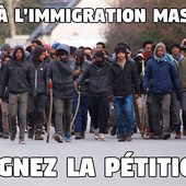 Pétition : STOP à l'immigration massive !