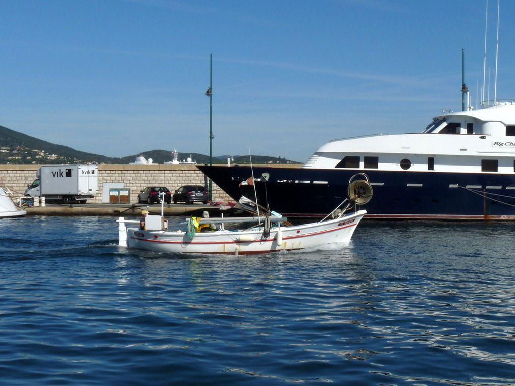 DEUX  FRERES  TL 326430 , dans le port de Sant Tropez le 21 septembre 2015