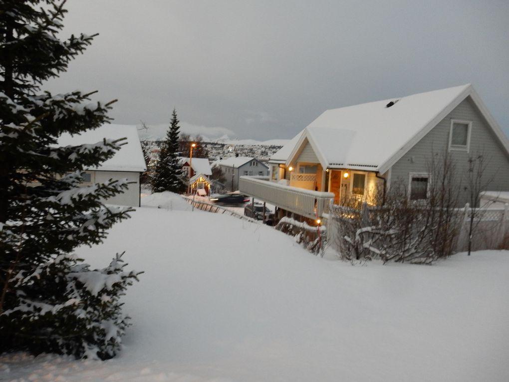 Lauf Abenteuer Polar Night Halbmarathon & 10 Km Lauf am 4. Januar 2020
