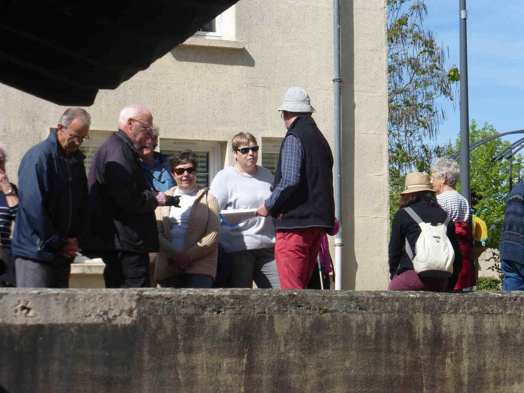 Un des lavoirs de Sonzay alimenté par la source Saint Genest avec quelques occupants privilégiés !
