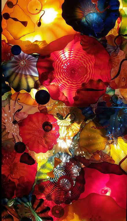 Diaporama : Chihuly Garden and Glass, Persian Ceiling