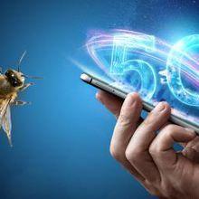 Selon un récent rapport d'une organisation de protection de la nature, les ondes de la 5G seraient nocives pour les insectes. Et ses effets sur l'Homme ne sont guère plus encourageants. En effet, bien qu'il y ait débat sur la dangerosité des téléphones portables et de leurs ondes pour l'Homme, la 5G est aussi soupçonnée d'influencer la sécurité des habitants aux Etat-Unis.