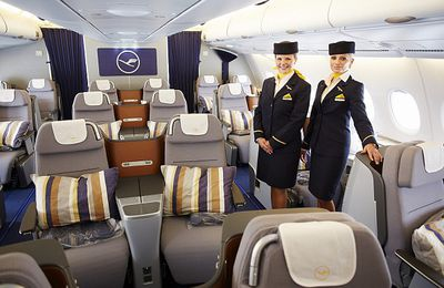 Want To Fly In Richness Make KLM Business Class Flights Booking!
