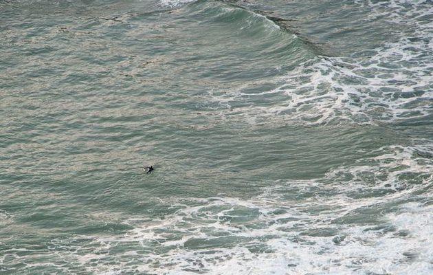 Mobilisation pour retrouver un surfer au large de Roscoff