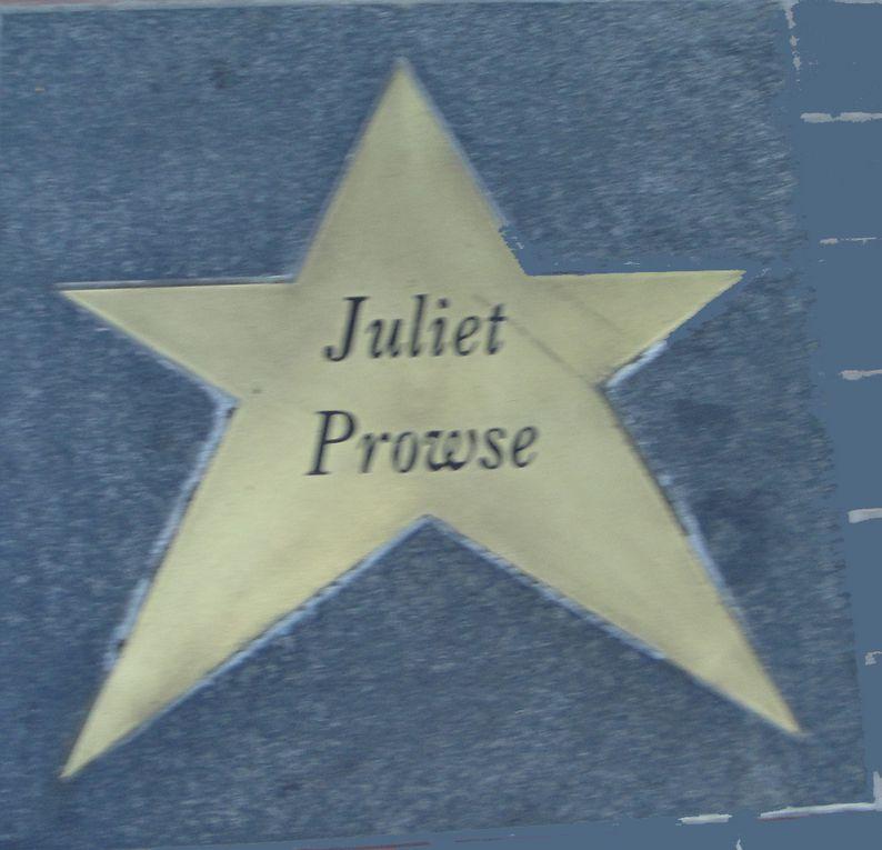 Les étoiles de Stars Théâtre - Cinéma